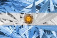 Национальный конгресс Аргентины легализовал возможность использования конопли в медицинских целях