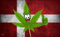 Использование конопли в медицинских целях в Дании