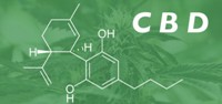 Необходимость разумного регулирования каннабидиола в пищевых продуктах, косметике, медицине и фармакологии