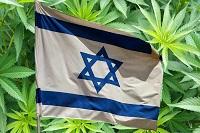 Израиль - общемировой лидер в исследовании терапевтических свойств конопли