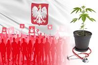 Нижняя палата парламента Польши проголосовала за использование конопли в медицинских целях